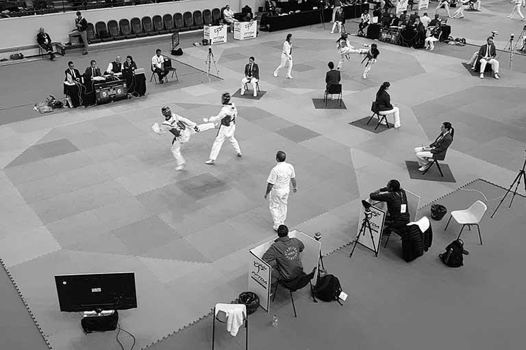 taekwondo_SW_768_512_300